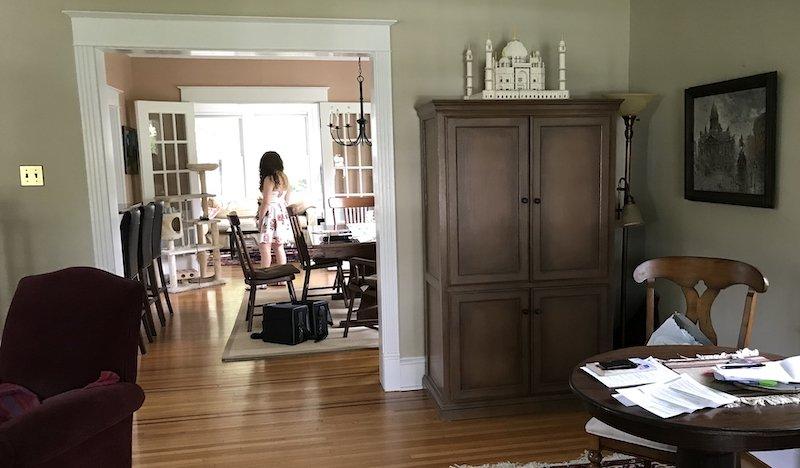Aspiring Interior Designer
